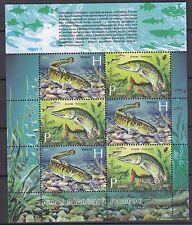 BELARUS 2011 **MNH SC# ( ) S/S - Fishes of Belarus Reservoirs