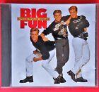 cd big fun a pocketful of dreams blame it on the boogie can't shake the feeling