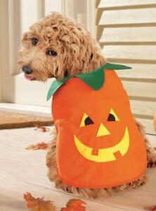 Halloween Pumpkin Pet Costume MEDIUM