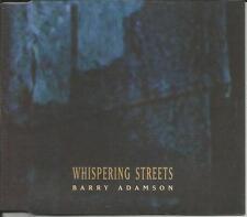 Birthday party BARRY ADAMSON Whispering Streets MIXES CD single Funkstorung 2002
