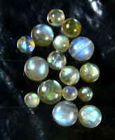 100%Natural Flashy Labradorite Lot 5 to 12 mm Round Cabochon Gemstone Free Ship