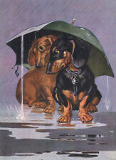 DACHSHUND CHARMING DOG GREETINGS NOTE CARD TWO DOGS SIT UNDER UMBRELLA IN RAIN