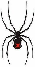 Redback Spider Sticker Decal - Massive 17+ cm long