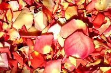 24CUPS FREEZE DRIED ROSE PETALS - SUMMERSET MIX- WEDDINGS ROMANCE SCATTER