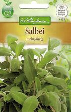 4979 Chrestensen Salbei 'mehrjährig' starkes Aroma Samen