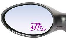 2x Personalizado Nombre Personalizado coche espejo retrovisor Stickers Calcomanías