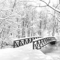Servietten 20, Serviettentechnik Snow Bridge Winter Ambiente 33 x 33