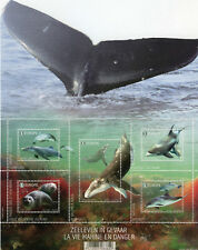 Belgium 2017 MNH Sea Life in Danger Whales Dolphins Seals 5v M/S Marine Stamps