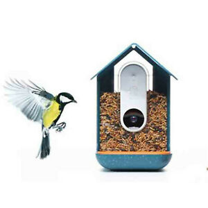 Bird Feeder with Camera +BRAND NEW+ Nature Seed
