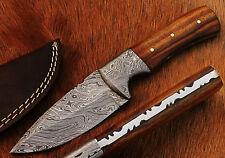 Beautiful Damascus Handmade Hunting Knife with Rose Wood Handle (1012W)