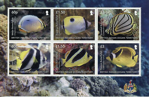 BIOT Fish Stamps 2020 MNH Indian Butterflyfish Pennant Coralfish Fishes 6v M/S