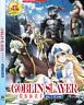 DVD ANIME GOBLIN SLAYER Vol.1-12 End ENGLISH VERSION Region ALL + FREE SHIP