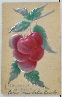 Metallic Finish Fruit Heartiest Congratulations Embossed c1910 Postcard L20