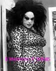 "DIVINE 8X10 Lab Photo Harris Glenn Milstead, 1974 ""FEMALE TROUBLE"" Leopard Print"