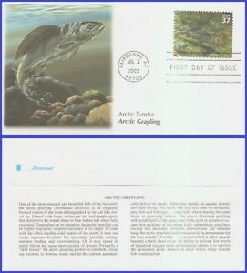 USA5 #3802i U/A FLEETWOOD FDC   Tundra Arctic Grayling