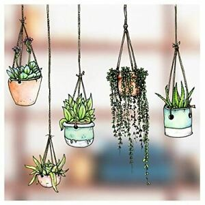 Set of 5 Illustrated Hanging Plants/Potted Plant Stickers/Decals