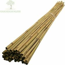 Bamboo Garden Pot Stakes Plant Support Indoor 3ft 4ft 5ft - Pack of 25