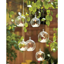 Hanging Glass Ball Vase Fish Aquarium Tank Glass Terrarium for succulent Plant