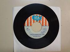 """SHADY DAZE: Love Is A Beautiful Thing-I'll Make You Pay-U.S. 7"""" 67 U.S.A. 883 DJ"""