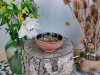 Vintage Handmade Terracotta Pottery glazed bowl, potpourri house plant.