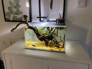 Weissglas Optiwhite Pool-Aquarium, Salzwasser, Meerwasser, Weißglas