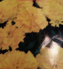 Marigold Petite Yellow  Seeds