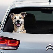 Chien coup d'oeil sécurité funny novelty autocollant fenêtre autocollant voiture cadeau grand