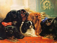 Cavalier King Charles Spaniel Dogs 1860 Painting  8 Large New Blank Note Cards