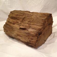 New listing Driftwood Basking Log Aquarium Terrarium Crafts Natural Garden Decor Taxidermy d