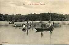 SRI LANKA / ASIE / ASIA / COLOMBO / CEYLON / CEYLAN / A FISH KRAAL CEYLON