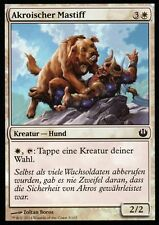 Akroischer Mastiff Foil/Akroan Mastiff | NM | J. I. NYX | Ger | Magic MTG