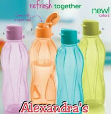 500ml Eco Bottle
