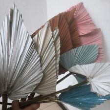 Dyeing Dried Flowers Cattail Leaf Palm Fan Bouquet Wedding Home Decor Craft DIY