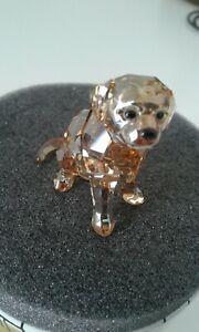 swarovski golden-lovlots-chien-dog-comme neuf