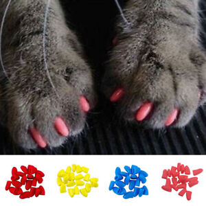 Pack of Silicone Soft Pet Paw Dog Cat Kitten Claw Nail Caps Cover With Glue