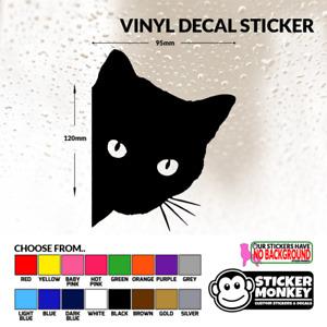 Peeping Cat / Kitten Vinyl Decal Sticker for Car, Van, Truck, Camper, MotorBike