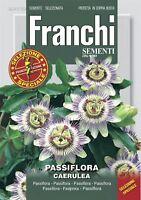 Franchi - Fdbf _ S 341-30 - Pasión Flor - Passiflora - Semillas