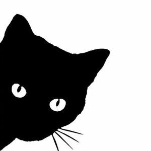 1x Black Cat Face Peering Funny Car Decal Window Auto Bumper Accessories Sticker