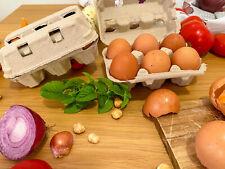 50 contenitori portauova bucati da 6 uova in cartone