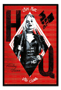 The Suicide Squad Harley Quinn MAGNETIC NOTICE BOARD Inc Magnets | UK Seller