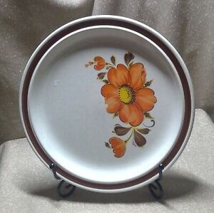 1970s Japan Stoneware Plate Valencia Pattern