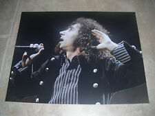 Serj Tankian System of a Down Live Color 11x14 Promo Photo