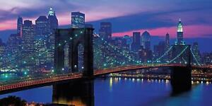 Clementoni  New York High Quality Jigsaw Puzzle (13200 Pieces)