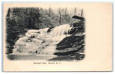 Early 1900s Arkwright Falls, Dunkirk, NY Postcard