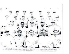 1912 1913  KANSAS CITY BLUES 8X10 TEAM PHOTO  BASEBALL MISSOURI USA