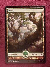 Battle for Zendikar Full Art Land  Forest #274  VO  -  MTG Magic (Mint/NM)