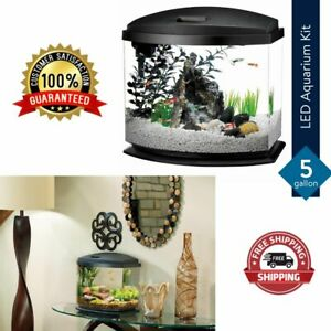 5 Gallon Mini Bow Aquarium Starter Kit Energy-Saving Powerful Filtration LED New
