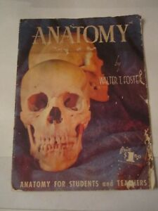 VINTAGE ANATOMY BY WALTER T. FOSTER - ANATOMY FOR STUDENTS & TEACHERS - TUB R5