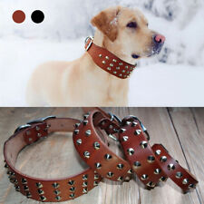 Genuine Leather Studded Dog Collar Brown Black Adjustable Small Large Doberman