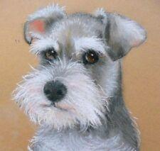 """Dogs Schnauzer """"So Cute""""Limited Edition Giclee Art Print Original by Su Barratt"""